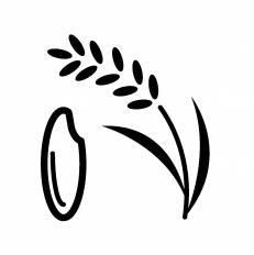 米に関する写真写真素材なら写真ac無料フリーダウンロードok